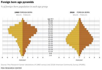 10_foreign_born_pyramid