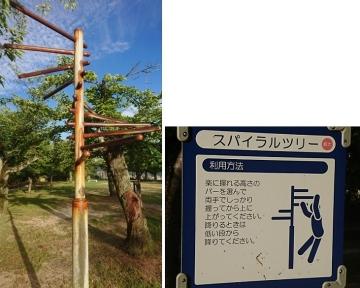 Spiral-tree